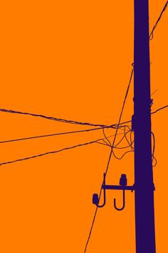 orange x purple (silh