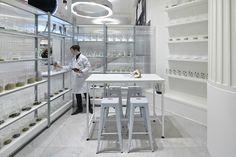 Campaign: Fragrance Lab