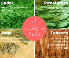 Four Sacred Smudging Herbs: Did you know that different kinds of herbs can be used for smudging? Most frequently we reach for sage but we can choose a herb to support the type of cleansing or ritual required. Smudging Prayer, Sage Smudging, Types Of Sage, Cedar Smudge, Sage Herb, Native American Spirituality, Native American Wisdom, Sacred Plant, Removing Negative Energy