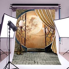 Purchase Oriental Screen Indoor Studio Photography Background Backdrop from Hedda Stan on OpenSky. Video Backdrops, Photo Backdrops, Digital Photography, Product Photography, Background For Photography, Photo Backgrounds, Photo Studio, Vivid Colors, Oriental