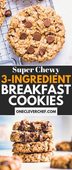 These Oatmeal Breakfast Cookies are filled with pitted dates, peanut butter, and chocolate chips for a very satisfiying on-the-go snack or breakfast! These clean eating cookies are also vegan, gluten- Cookies Healthy, Protein Cookies, Healthy Treats, Healthy Desserts, Healthy Food, Low Calorie Breakfast, Breakfast Recipes, Dessert Recipes, Cookie Recipes