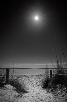 Moon And Stars Over Beach In Black and White Art Print by Greg and Chrystal Mimbs. All prints are professionally printed, packaged, and shipped within 3 - 4 business days. Choose from multiple sizes and hundreds of frame and mat options. Black And White Picture Wall, Black And White Beach, Black And White Stars, Black And White Pictures, White Art, White White, Gray Aesthetic, Black Aesthetic Wallpaper, Black And White Aesthetic