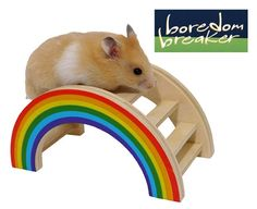 (Boredom Breaker) Small Animal Rainbow Play Bridge - For Hamsters, Gerbils and Mice..  Pets will love to climb over & sleep under this fun wooden bridge.  Made from pet-safe materials, so it's also safe & fun to chew.  Approximate measurements: 14.5 x 7.5 x 7cm. £4.49