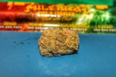 Cannabis Photography mjlinks.com