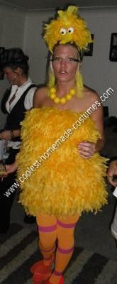 Homemade Sexy Big Bird Halloween Costume Idea: I wanted to be big bird! Here's what I did to create this homemade Big Bird Halloween costume idea. I bought 8 yellow feather boas and sewed them Big Bird Halloween Costume, Flamingo Costume, Yellow Costume, Yellow Feathers, Homemade Costumes, Feather Boas, Baby Kids, Costume Ideas, Kid Stuff