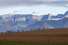Cape Epic 2014 Stage 4 - Foto von  Nick Muzik-Cape Epic-SPORTZPICS