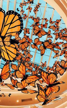 haleyschmidt on vsco Collage Mural, Bedroom Wall Collage, Photo Wall Collage, Picture Wall, Orange Wallpaper, Butterfly Wallpaper, Pastel Wallpaper, Cute Wallpaper Backgrounds, Tumblr Wallpaper