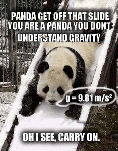 The fun really is on the fact that the panda can talk bwahaha