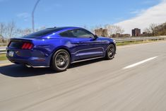 S550 Mustang, Ford Mustang Shelby, Coyotes, Car Ford, Foxes, Muscle Cars, Gallery, Autos