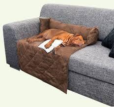 Resultado de imagen para camas para perros
