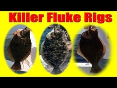 Fluke Fishing How TO Tie KILLER Fluke / Summer Flounder Rigs JUMBO Fluke Catchers. This video demonstrates two of my favorite rigs I use for fluke (summer flounder) fishing in my local waters of the Great South bay.     Blue Frog Bucktails Thundermist Lures T-Turn swivels and Berkley Gulp used in these rigs have replaced natural bait for all of my...