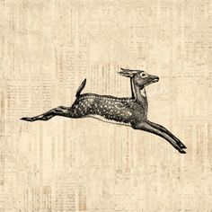 Antique Leaping Deer Print Home Decor Vintage Print with Vintage Script Paper Background No.714 B4 8x8 8x10 11x14