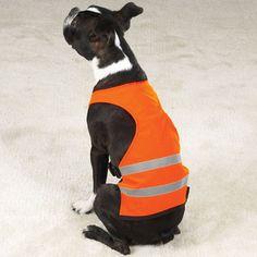 safety_vest.JPG