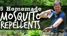 5 Homemade Mosquito Repellents (via Survival at Home)