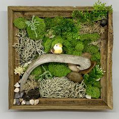 Mix of moss, rocks, wood and a bird all in a barn wood wall box Workshops available Moss Wall Art, Moss Art, Dish Garden, Garden Art, Moss Graffiti, Contemporary Flower Arrangements, Moss Decor, Order Flowers Online, Sympathy Flowers