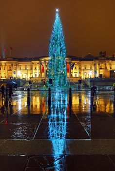 Christmas trees around the world – in pictures! The official tree in London comes from Norway each year since 1947.