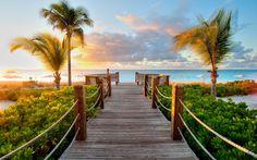 Caribbean Wood Beach 1920×1200