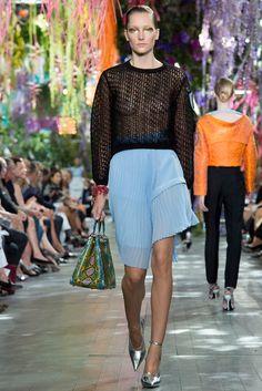 Christian Dior Spring 2014 Ready-to-Wear Fashion Show - Josephine Le Tutour (Elite)