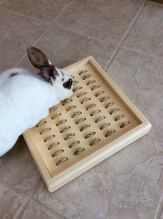 Your place to buy and sell all things handmade Bunny Cages, Rabbit Cages, House Rabbit, Rabbit Toys, Rabbit Pen, Bunny Rabbit, Box Bunny, Custom Woodworking, Woodworking Projects Plans