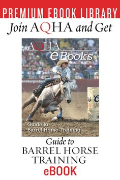 Guide to Barrel Horse Training Horse Stalls, Horse Barns, Horses, Horse Training Tips, Horse Tips, Western Horse Tack, Western Saddles, Barrel Racing Quotes, National Finals Rodeo