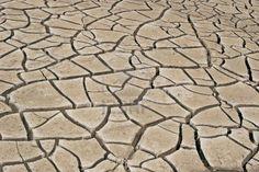 Deep dry cracks on earth Stock Photo