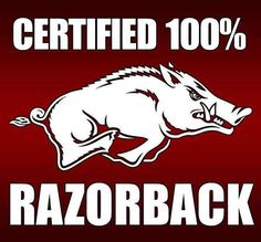 The fans at Bud Walton Arena will see a game between the Auburn Tigers and the Arkansas Razorbacks when they take their seats on Tuesday evening. The Auburn Tig Ar Razorbacks, Arkansas Razorbacks Football, Clemson, Auburn Vs, Auburn Tigers, Sec Football, College Football, Sec Network, Woo Pig Sooie