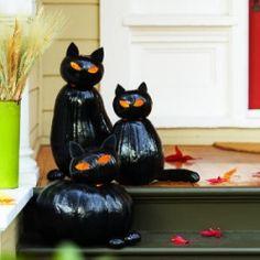 Instructions for cute black cat pumpkins.