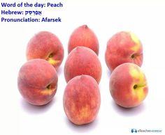 Afarsek Learn Hebrew, Gods Eye, Hebrew Words, Peach, Fruit, Learning, Israel, Language, Apple