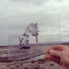 Artist Doodles Cartoons on Transparency Film and Places Them in Front of Real World Scenes