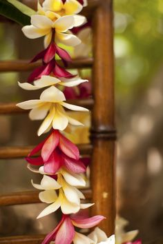 May 1st is the Annual Lei Day Festival in Hawaii
