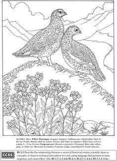 State Bird 2