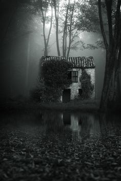 Isolated, abandoned, creepy cottage deep in the dark forest, shrouded by an eerie mist. Abandoned Mansions, Abandoned Buildings, Abandoned Places, Spooky Places, Haunted Places, Creation Art, Cottage In The Woods, Dark Places, Belle Photo