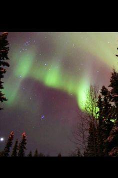 Aurora in my yard North Pole, Alaska