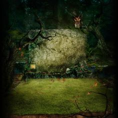 Painted Forrest Scary Owl Tree Photography Backdrop - 6361