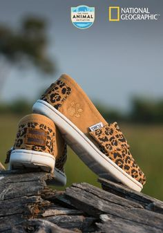 Each item in the TOMS and National Geographic Big Cats Collection draws attention to the critical need to protect big cats in the wild for generations to come.
