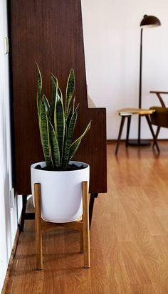 Retro mid century plant staan kader