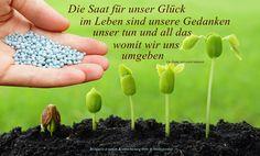 https://www.facebook.com/Gaby.GedankenGut/