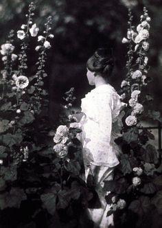John G. Bullock (1854-1939), Marjorie in the Garden, ca. 1903, platinum print(from theshipthatflew)