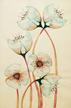 Imagined Botanicals Colleen Parker - Paperface http://colleenparker.tumblr.com