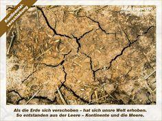 Kunst vom Feld – www.kunstvomfeld.de
