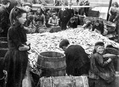 Old photograph of the fish market Pittenweem, East Neuk of Fife, Scotland