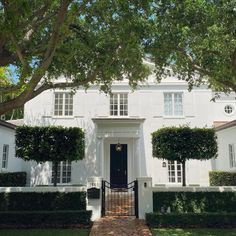 Southern Homes, Southern Living, Southern Style, White Shutters, Erin Gates, Coconut Grove, White Houses, New Builds, Stairways