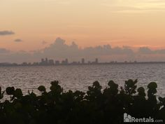 Beautiful view of Tampa Bay Home - Rentals