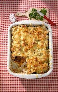 Yummie => Sauerkraut-Lasagne