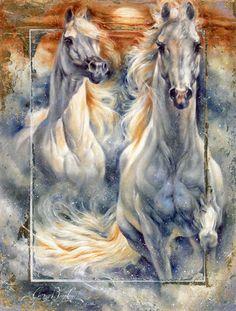 Amazing White Arabians Running Through Water.