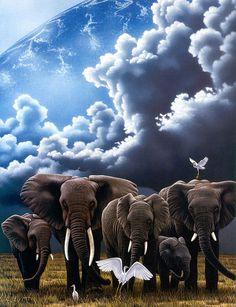 Elephants and white heron