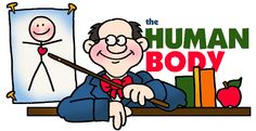 Science - The Human Body - FREE K-12 Lesson Plans & Games
