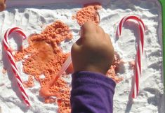 Candy Cane Science Activity