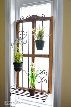 (I was thinking that Tim could build something to fit in the bottom portion of the windows. This to me stands out too much, but lends ideas.) Privacy window treatment of an old window with a plant stand attached  / part of A Little R and R in a Bed and Breakfast via http://www.funk...