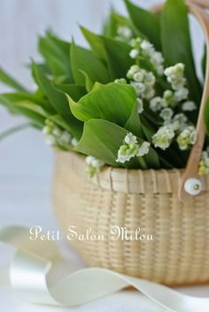 """Happy French May Day! """"Fête du Muguet""""   - On May 1st, flower vendors are EVERYWHERE selling little bouquets of Lily of the Valley to give to the ladies and girls to celebrate Labor Day and as a lucky charm to find potential suitors- Charles IX started the tradition by giving the ladies of his Court these flowers (and the day off?) via petitmilou.exblog.jp"""
